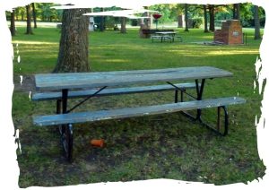 Picnic table meeting